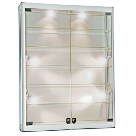 1000mm wide Wall Mounted Display Cabinet in Silver - WM10-12
