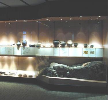 Built in museum showcase 3