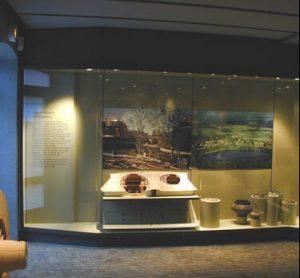 built in museum showcase 4