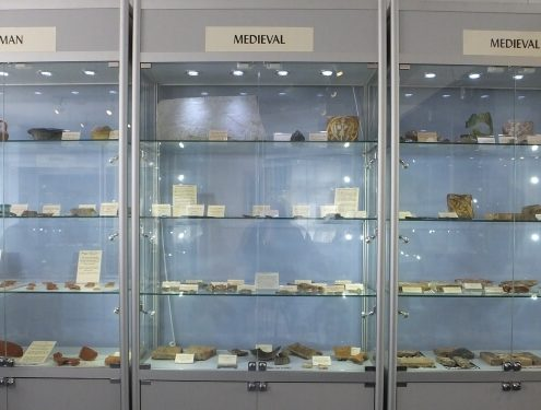 freestanding museum cases - blake museum