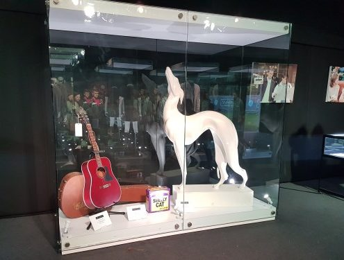 Large bespoke display case for Comedy Central UK's Friendsfest