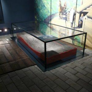 museum floor showcase 4