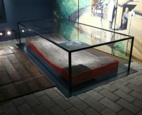Museum floor showcase 3