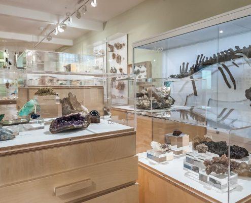 derby museum 2