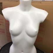 Female Mannequin Torso – desk top in white