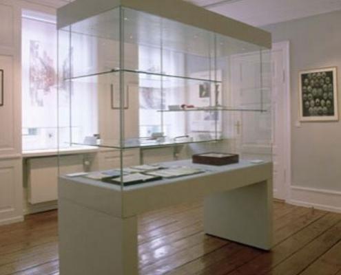 Museum floor showcase 6