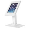iPad Secure Counter Top Display - 2